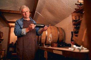 maturarea vinului