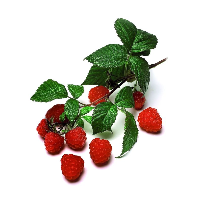 fructele_de_padure_scad_colesterolul_fotolia2.jpg