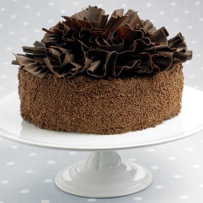 tort_de_ciocolata_cu_fundite_400.jpg