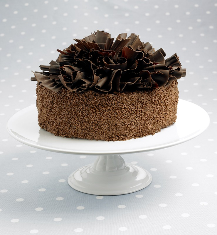 tort_de_ciocolata_cu_fundite_gal.jpg